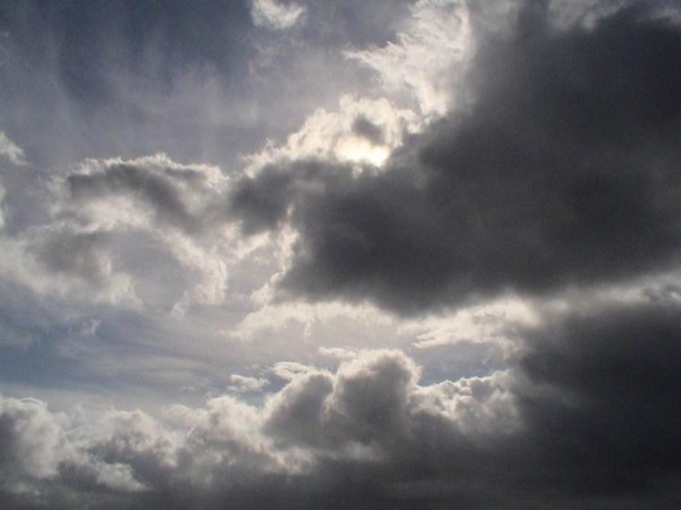 Vidas nubladas
